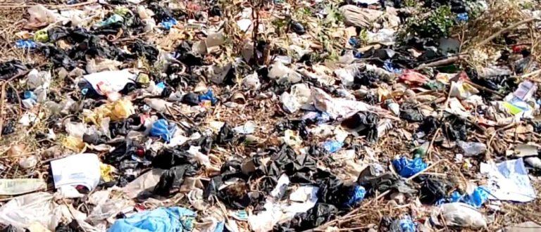 Article : De la nécessité de vulgariser la loi portant interdiction de fabrication, importation, vente et utilisation des sachets non biodégradables au Bénin