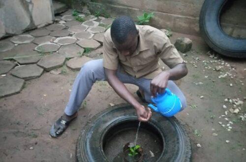 Article : 36ème édition de la journée nationale de l'arbre au Bénin